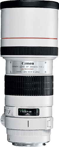 Canon 300mm f4L IS